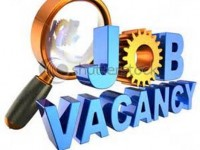job vacany notice
