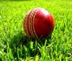 Cricket-at-the-spa