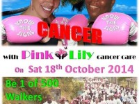Pink Lily walkathon poster two