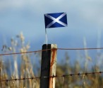 scottish-saltire-fence-post