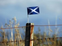 scottish-saltire-fence-post