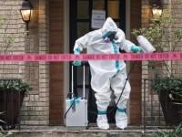 ebola d