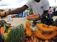 Locally grown fruits and vegetables available at one of the Department of Agriculture's annual Open Day in Charlestown