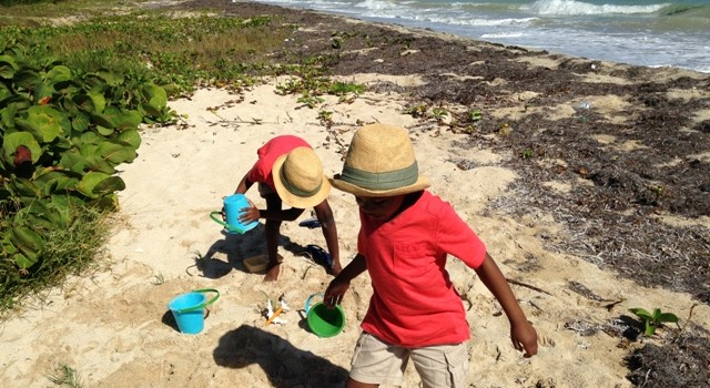 Navigating Island Parenting