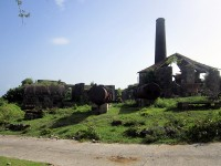 New-River-Estate-Nevis-10