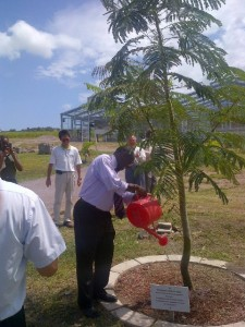 Photo shows St. Kitts and Nevis' Prime Minister the Rt. Hon. Dr. Denzil L. Douglas watering a tree of the national flower that he planted in on January 31st 2012 on the compound of the Agro-Tourism Demonstration Project. (photo by Erasmus Williams)