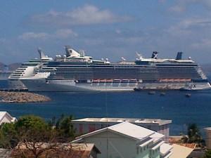 cruise12334