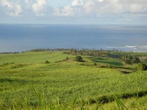 Lands in St Kitts