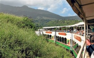 tisdall - St. Kitts Scenic Railway winds it way through the canefields