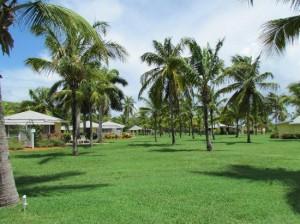 nisbet-plantation-beach