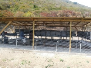 Farm where monkeys will be kept after capture