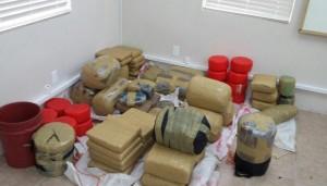 517lbs of Marijuana seized in Nevis 13Nov