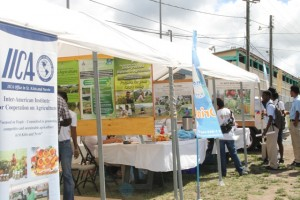 Booths of some of the Ministry of Agriculture's allied agencies (l-r) the Inter-American Institute for Cooperation on Agriculture (IICA), the University of the West Indies and the Republic of China Taiwan (ROC) at its 22nd Annual Open Day at the Villa Grounds in Charlestown on March 17, 2016