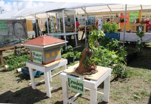 Exhibits on Water Harvesting and Erosion Control on display at the 22nd Ministry of Agriculture Open Day at the Villa Grounds in Charlestown on March 17, 2
